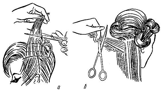 Рис. 48. Приемы филировки волос ножницами на различных участках волосяного покрова головы: а - теменного; б - затылочного