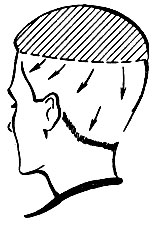 Рис. 58. Направление расчесывания волос для выполнения окантовки
