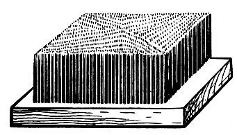Рис. 86. Карда