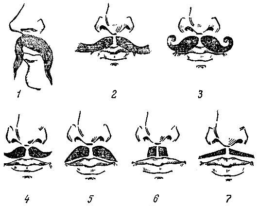 Рис. 32. Форма усов: 1 - украинские; 2 - узбекские; 3 - русские; 4 - фигурные; 5, 6, 7 - английские