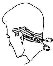 Рис. 44. Область обработки волос при сведении их на нет