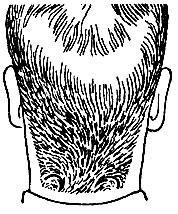 Рис. 49. Тушевка волос