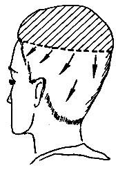 Рис. 55. Направление расчесывания волос для окантовки